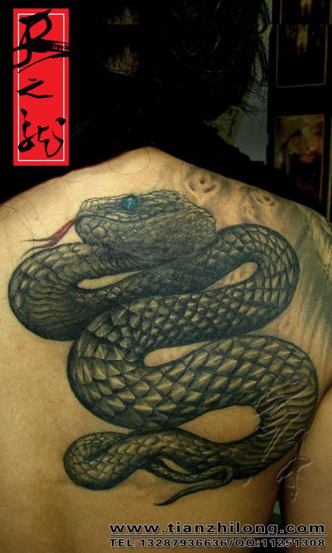 Татуировки тату змей татуировки тату