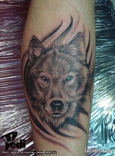Татуировки тату волка